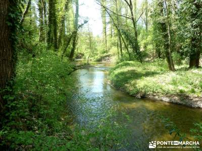 Senda de los Pescadores-Cuellar;laguna negra sierra de madrid pueblos abandonados